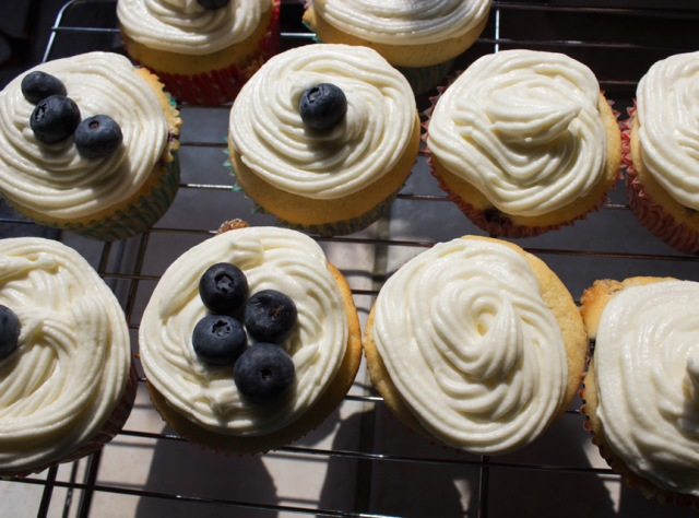 blueberry cupcakes 11
