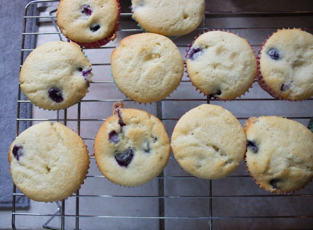 blueberry cupcakes 8