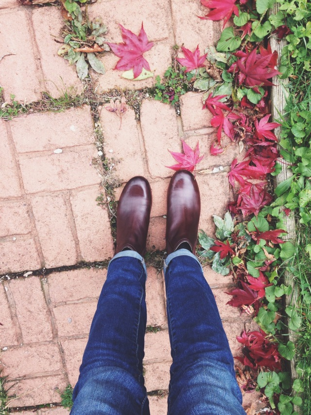 friday favorites frye jillian chelsea booties