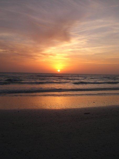 sarasota vaca siesta key beach sunset